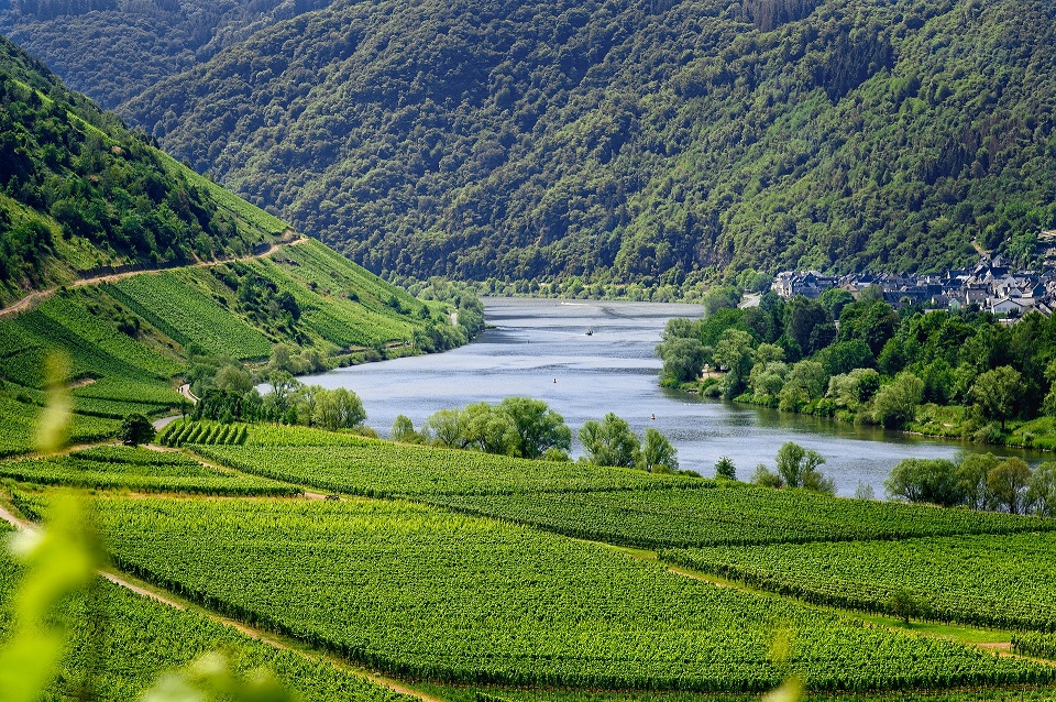 Germany mosel region