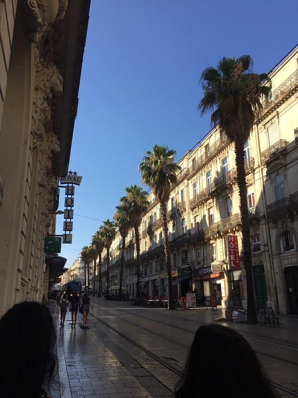 Montpellier town
